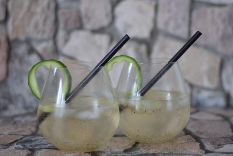 Leichter, frühsommerlicher Gin Tonic